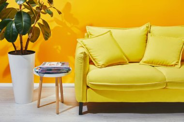 Sofa with pillows, houseplant and little table with journals near yellow wall