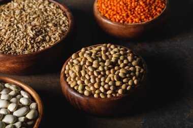 soybean, lentils and oat groats in wooden bowls on table