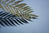 Fotografia ramo decorato da scintillio dorato e ombra, concetto della priorità bassa di Natale