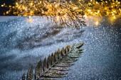 Slavnostní větví zdobený zlatými třpytkami na jiskřící hladině