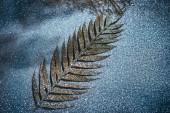 Fotografie Selektivní fokus slavnostní větve zdobí zlaté třpytky na jiskřící hladině