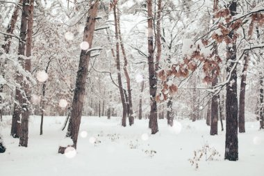 scenic view of winter forest and blurred falling snowflakes