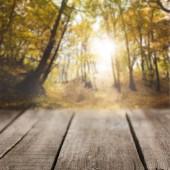 Fotografie prokládané dřevěné pozadí na krásné podzimní les tapety