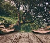 Fotografie prokládané dřevěné pozadí na krásné přírodní tapety