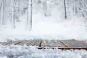 Photo surface level of striped brown wooden path and beautiful winter forest