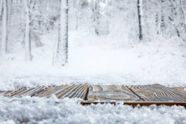 surface level of striped brown wooden path and beautiful winter forest