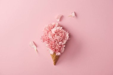 beautiful pink carnation flowers in wafer cone isolated on pink