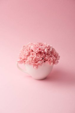 Beautiful tender pink carnation flowers in white cup on pink background stock vector