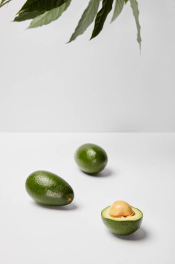 Selective focus of avocados on grey background stock vector