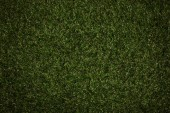 Fotografie top view of field with green grass