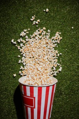 top view of tasty popcorn lying on grass near popcorn cup