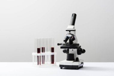 Microscope and test tubes with blood on grey background stock vector