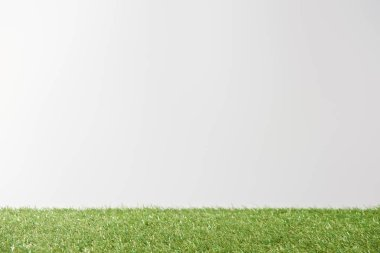 Fresh bright green grass on white background with copy space stock vector