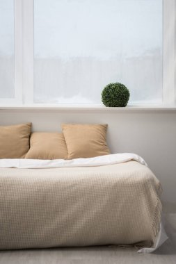 bedroom with brown pillows and white blanket on empty bed, plant