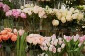 Fotografia Rose, tulipani e peonie in vasi di vetro
