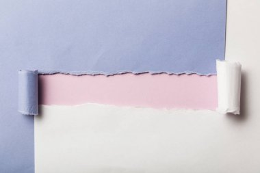 Torn blue and white papers with rolled edges on pink background stock vector