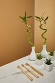 grüne Bambusrohr in Vase, Töpfe mit Pflanzen und Zahnbürsten neben Spiegel auf weißen Tisch und Beige Hintergrund