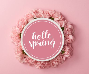 top view of plate with hello spring lettering and wreath of pink carnations on pink background