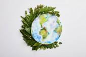 Zusammensetzung aus frischen grünen Farnblättern und Planetenbild isoliert auf grauem Hintergrund, Earth Day Konzept