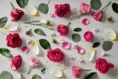 květinové pozadí vyrobené z růžových růží, pupeny, listů a lístků izolovaná Grey