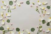 felülnézet kerek virágos keret készült a szirmok és levelek másol hely elszigetelt szürke