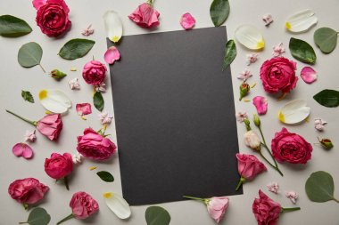Top view of blank black card with pink roses and petals isolated on grey stock vector