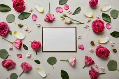 Top view of blank white card with pink roses and petals isolated on grey stock vector