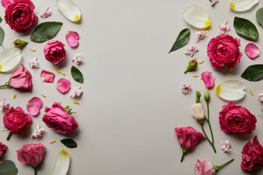 Top view of floral frame made of pink roses and petals isolated on grey with copy space stock vector