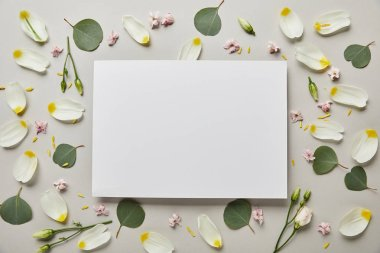 Top view of blank white card with leaves and petals isolated on grey stock vector