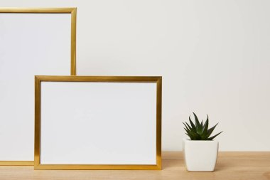 Blank frames near cactus on wooden table at home stock vector
