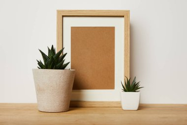 blank decorative frame near green plants in pots at home