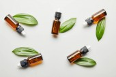 Photo Flat lay with bottles of essential oil with green leaves on grey background