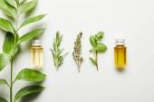 Pohled shora lahví s esenciální olej a zelené byliny na bílém pozadí
