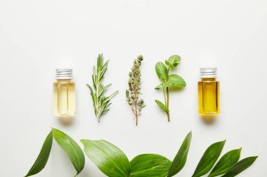 Top view of bottles with essential oil and herbs on white background