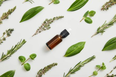 Flat lay with bottle of essential oil and fresh herbs on grey background