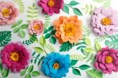 Fényképek felülnézet színes papír virágok és zöld levelek a szürke háttér