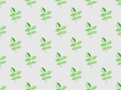 Fotografie green plants with leaves on grey, seamless background pattern