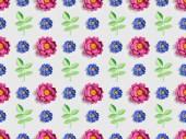 Fotografie zelené rostliny s květy růžové a modré papírové na vzor šedé, bezešvé pozadí
