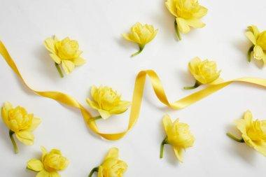 Beyaz Sarı nergis çiçek ve sarı saten kurdele Üstten Görünüm