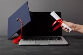 Levágott kilátás-ból asszony tárolás diploma mellett laptop-val üres képernyő és akadémiai sapka-ra szürke