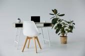 stůl s laptopem, bílým křeslem a rostlinami v květináči na šedé