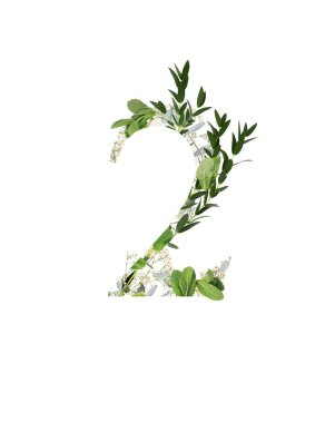 Number 2 with white flowers and green leaves isolated on white stock vector
