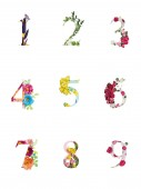 multicolored bright numbers with plants and flowers isolated on white