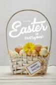 Weidenkorb mit bunt bemalten Eiern, gelber Gerbera-Blume, Grußkarte und frohen Ostern an alle Schriftzüge auf grauem Hintergrund