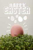 Fotografie pink painted chicken egg on green grass with happy Easter lettering on grey background