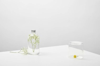 bottle with natural beauty product and white wildflowers on grey background