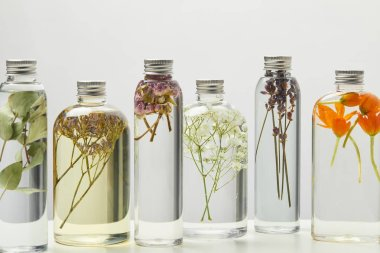 different organic beauty products in transparent bottles with herbs and flowers isolated on grey