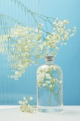 Fotografia white wildflowers behind textured glass near organic beauty product in bottle on blue background