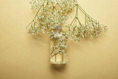 top view of bottle with natural beauty product near dried white wildflowers on yellow background