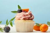 Cupcake mit Sahne, Trauben und Kumquats auf weißer Oberfläche auf blau isoliert